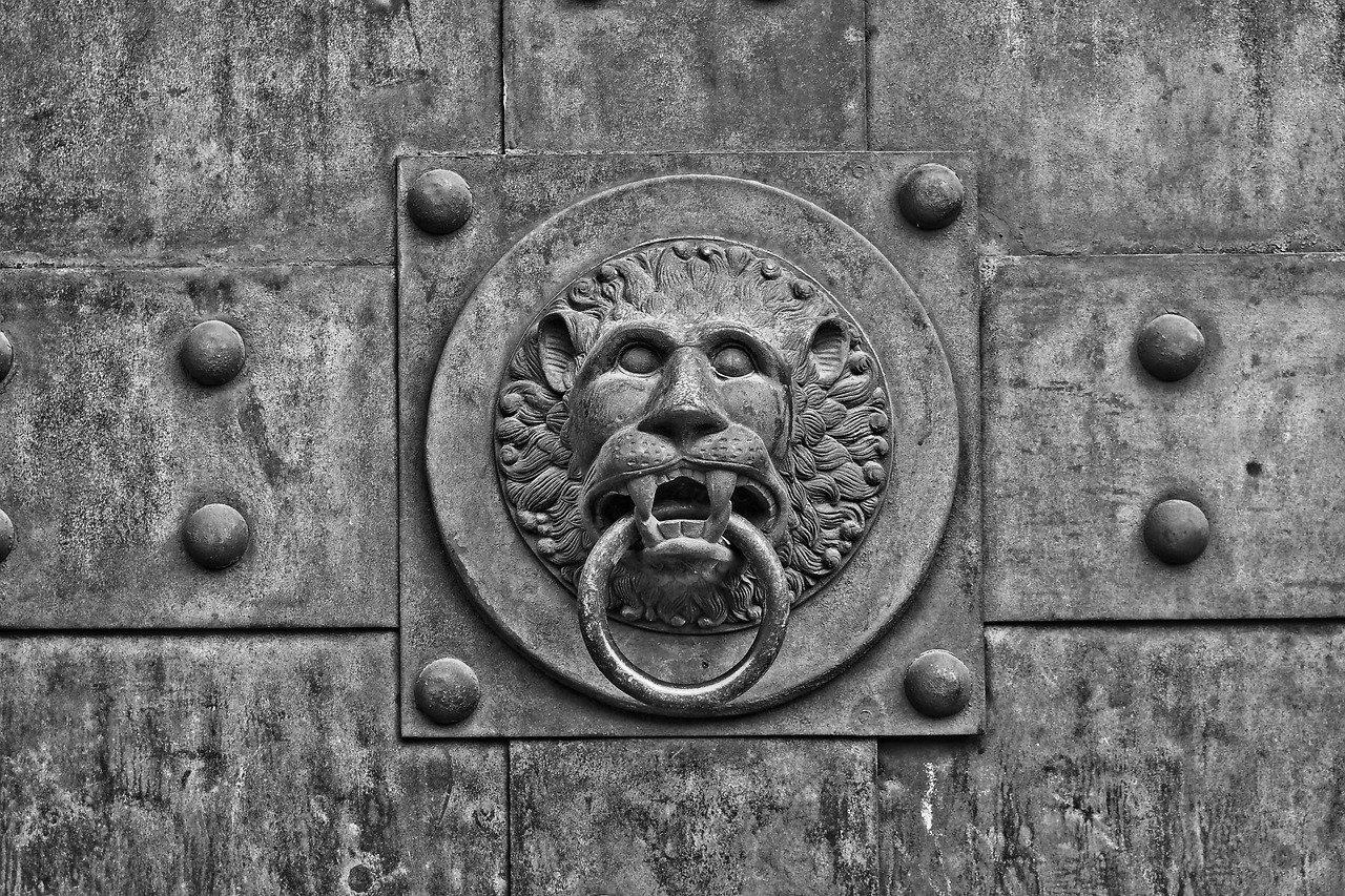 Porte d'Entrée Blindée à Ajaccio pour maison