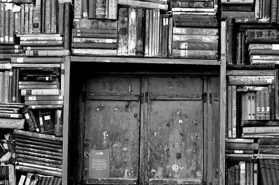 Porte d'Entrée Blindée à Vaulx-en-velin pour maison
